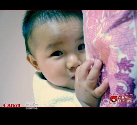金东浩东东8个月了日记照片