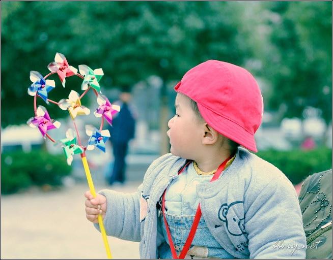 金东浩风车篇——包河游系列之一照片