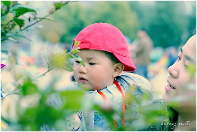 金东浩踏春篇——包河游系列之一日记照片