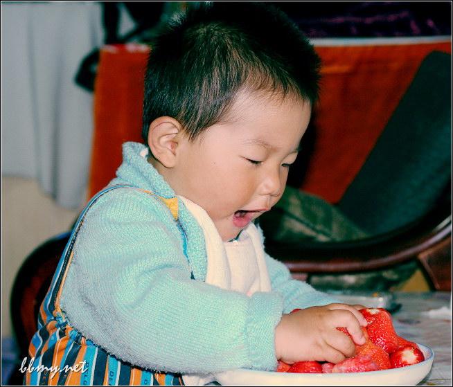 金东浩水果草莓照片