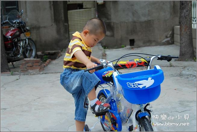 金东浩小自行车日记照片