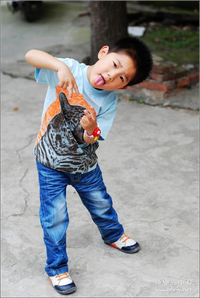 金东浩豹子装照片