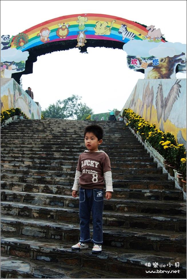 金东浩国庆长假三动物园日记照片