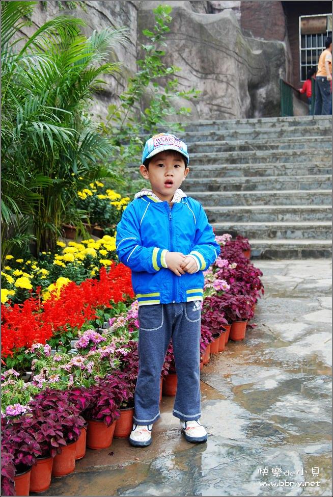 国庆长假三动物园