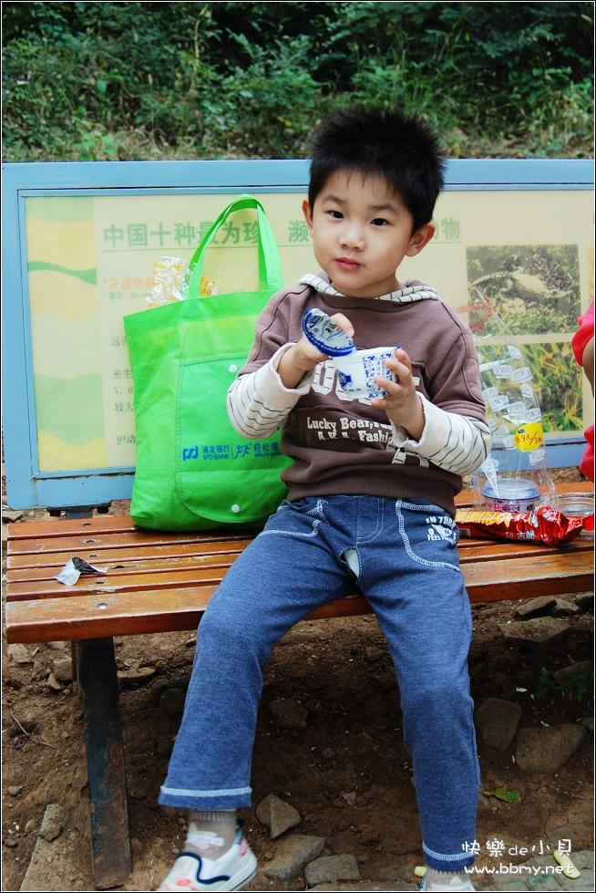 金东浩国庆长假三动物园照片