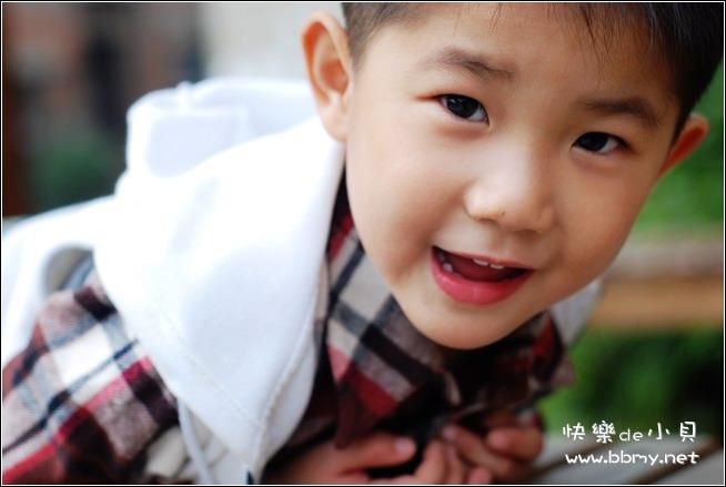 金东浩陪伴东东之小花园日记照片