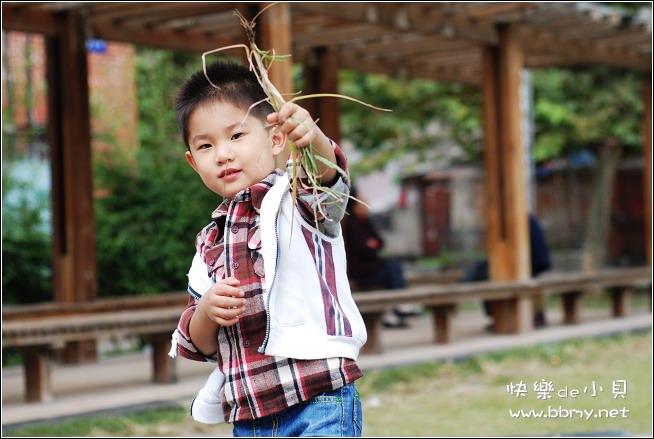 金东浩陪伴东东之小花园照片