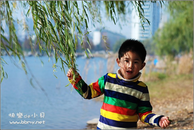 金东浩生态公园日记照片