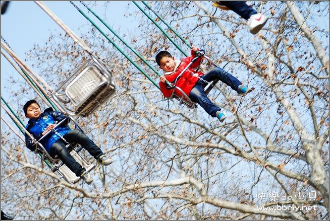 金东浩飞椅照片