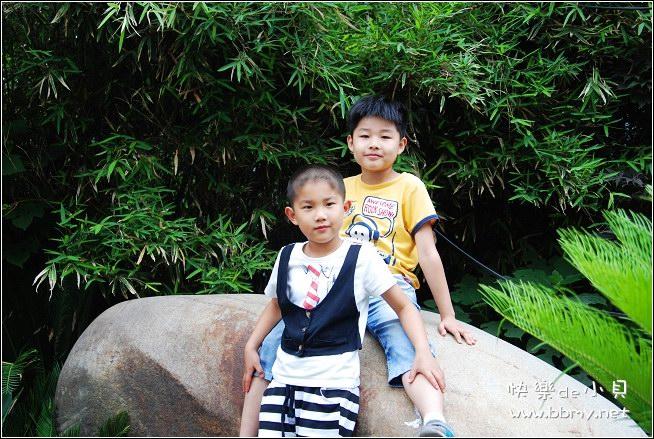 金东浩儿童节游杏花照片