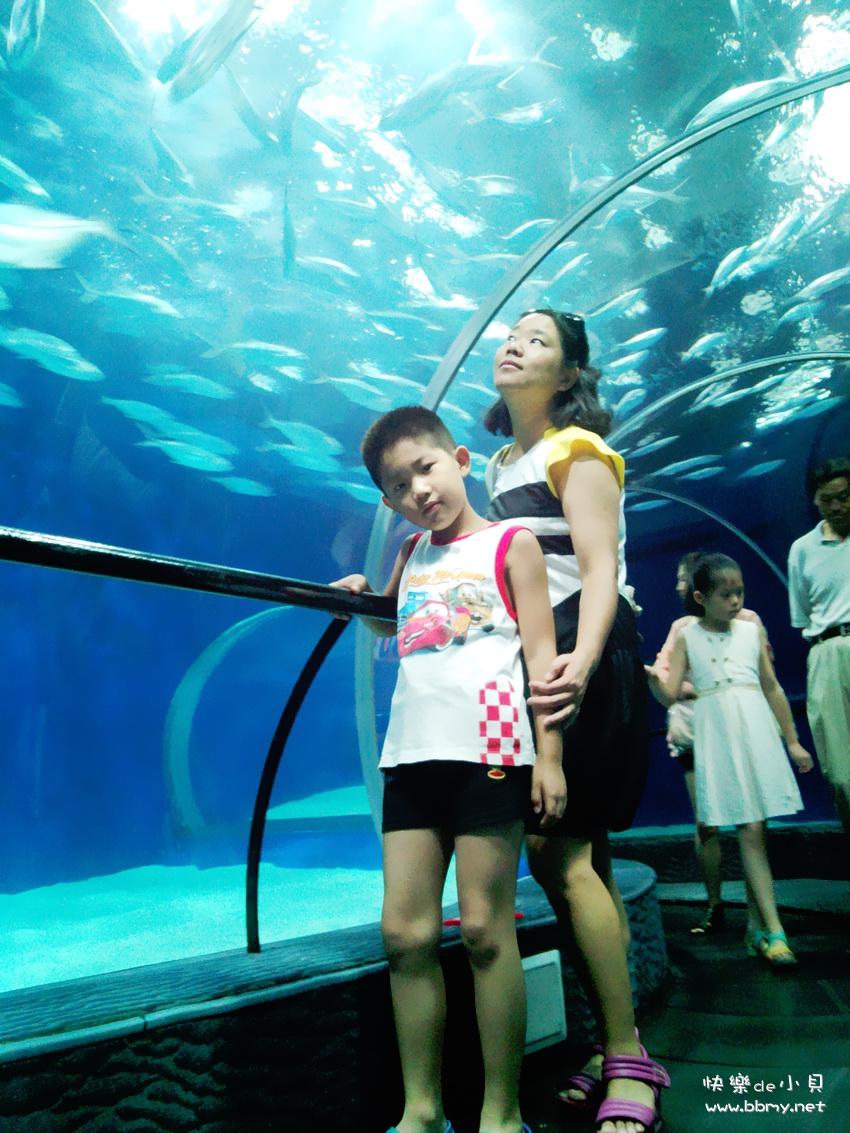 金东浩上海小游日记照片