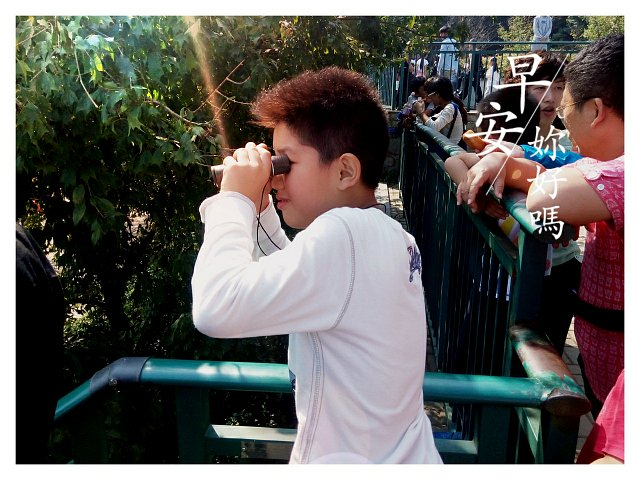 金东浩和同学一起爬大蜀山照片