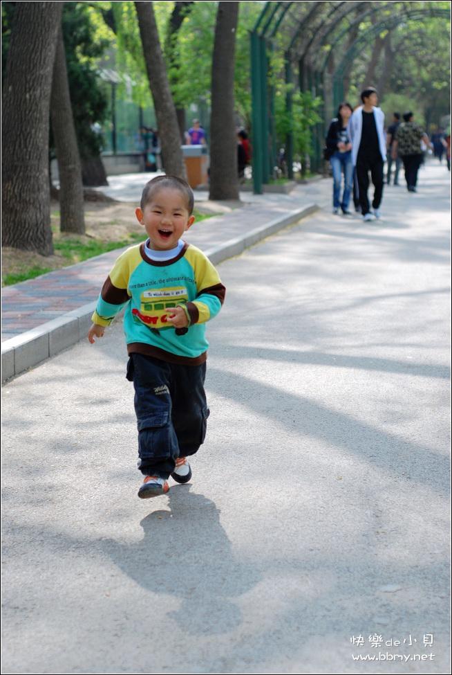 金东浩北京动物园日记照片