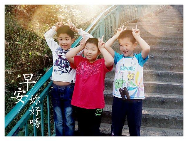 金东浩和同学一起爬大蜀山日记照片